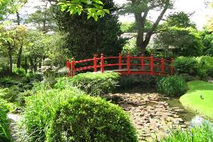 Japanese Gardens, Co. Kildare